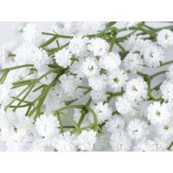 Branche de gypsophile blanc 31 cm  /  fleurs mariage, fleurs pour couronnes